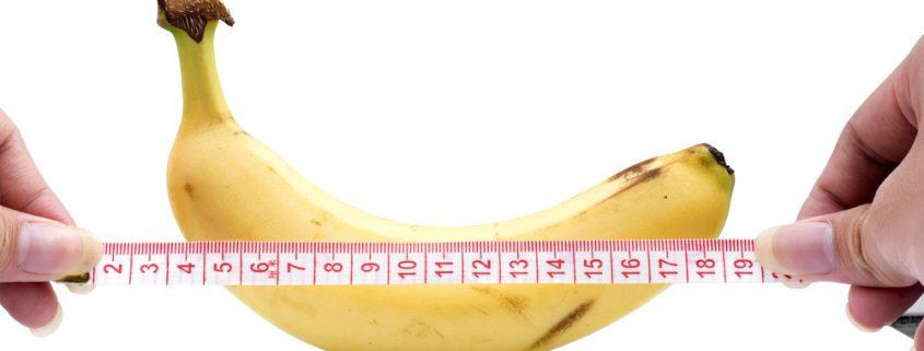 اندازه طبیعی آلت تناسلی